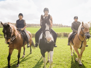 Half Hour Horse Riding Experience near Sheffield