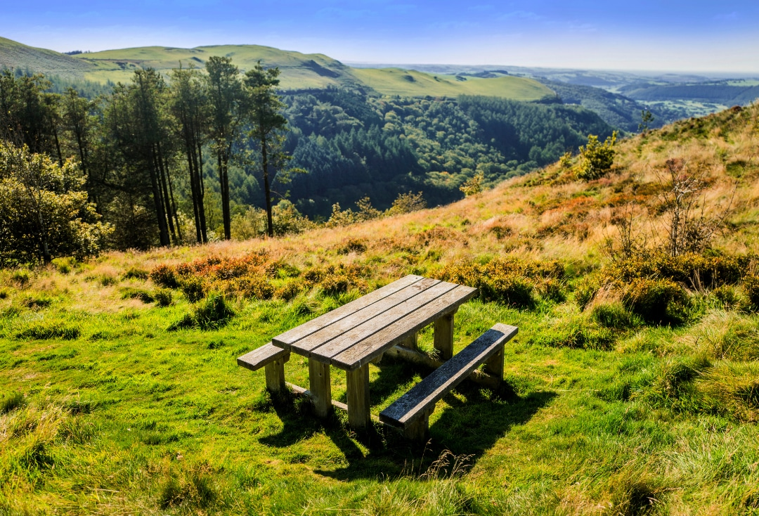 The Best Picnic Spots in Yorkshire